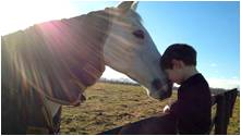 tn companionship horse and boy